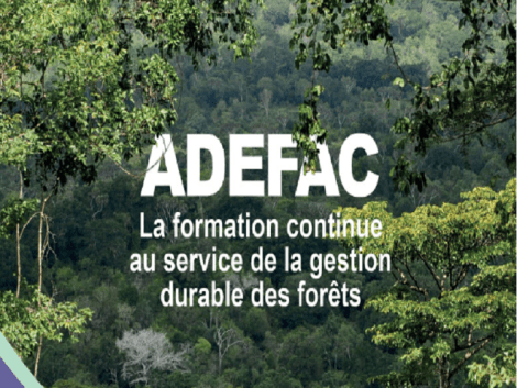 First steering committee meeting – ADEFAC project