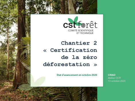 "FDA's STC for Forests, update on the ""Zero Deforestation Certification"" project"