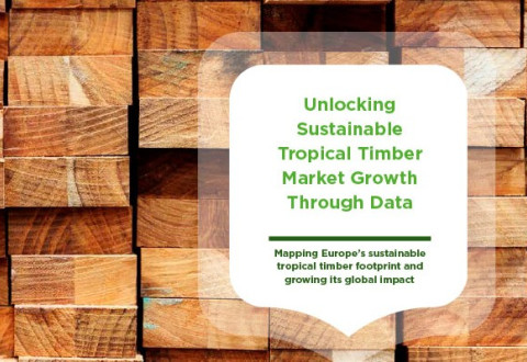Unlocking Sustainable Tropical Timber Market Growth Through Data