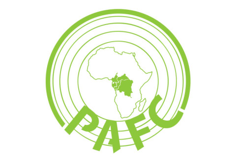 Announcement of the final workshop for the validation of the forest certification standard PAFC Congo Bassin (PAFC CB) October, 26th and 27th, 2020