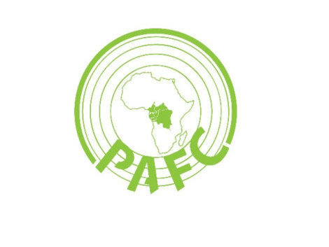 Introduction to the PAFC Congo Basin regional system
