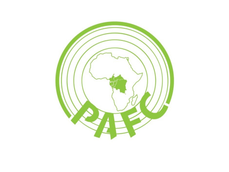 Validation of the PAFC Congo basin (PAFC CB) forest management certification standard by the regional working group (Forum)